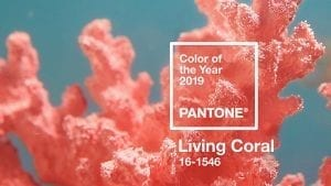 Pantone Color of the Year in your Social Media Graphics | The Radiance Mindset | www.theradiancemindset.com