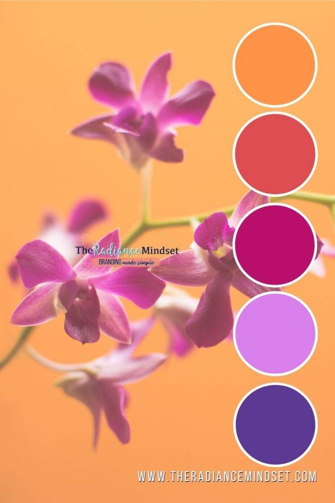 Using Orange in Marketing | The Radiance Mindset | www.theradaincemindset.com