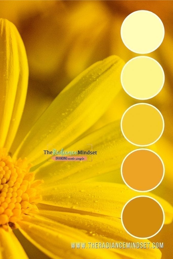 Using the color Yellow in Marketing | The Radiance Mindset | www.theradiancemindset.com